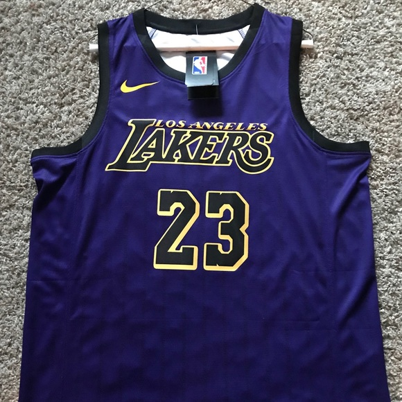 low priced ae682 3c417 Lebron James lakers jersey purple L/XL NWT
